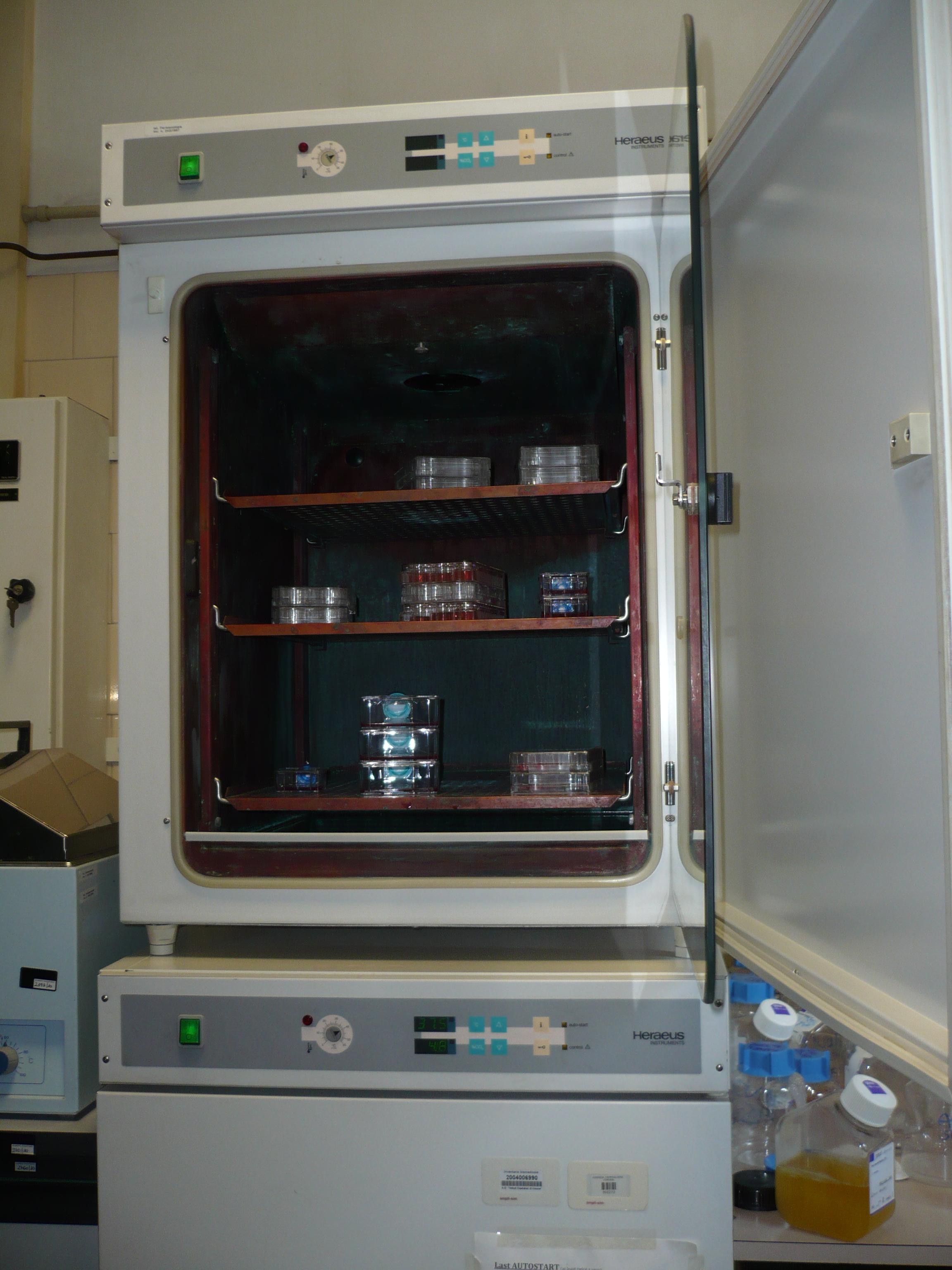 9 l'incubatore dove vengono coltivate le cellule staminali