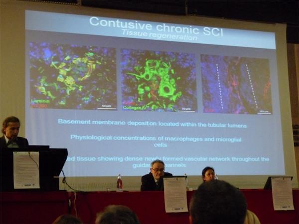ricerca microprotesi